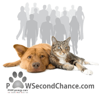 PAWSecondChance Blog